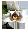 Корзина (ячейка 1,5х1,5 см) 4x4x4 (6х6х6 см) с подвесом
